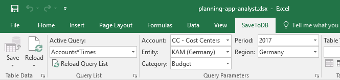 Example of budget form ribbon parameters